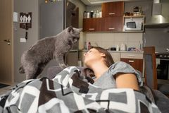 Young woman sleeping with her cat stock photo