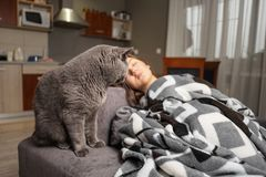 Young woman sleeping with her cat, cat is waiting when girl wake up, cat is sitting near sleeping girl royalty free stock image
