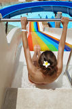 Young woman slide down at the water park Stock Image