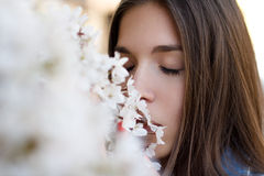 Young woman smelling cherry tree Royalty Free Stock Photo