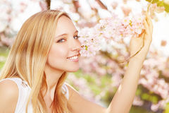 Young woman smelling flavor of cherry blossom Royalty Free Stock Images