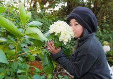 Young woman smelling flower Stock Photography