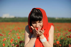 Young woman smelling poppies Royalty Free Stock Image
