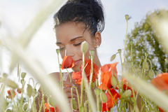 Young woman smelling poppy Stock Image