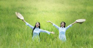 Young Woman Smiling in Grass Royalty Free Stock Images