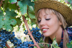 Young woman sniffing a bunch of grapes Stock Photography