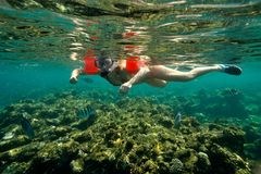 Young woman snorkeling Royalty Free Stock Photos