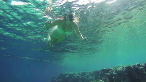 Young Woman Snorkeling on Colorful Reef in Red Sea, Egypt stock video