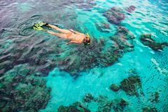Young woman snorkeling with coral reef fishes royalty free stock image