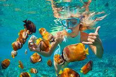 Young woman snorkeling with coral reef fishes. Happy family - girl in snorkeling mask dive underwater with tropical fishes in coral reef sea pool. Travel stock photos