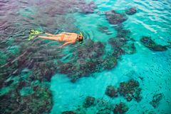 Young woman snorkeling with coral reef fishes. Happy girl in snorkeling mask dive underwater with tropical fishes in coral reef sea pool. Travel lifestyle, water royalty free stock photography