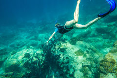 Young woman snorkeling Stock Photography