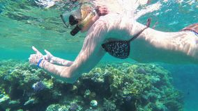 Young Woman with Snorkeling Mask and Tube Swimming in Red Sea near Coral Reef. And Colorful Fish. Underwater view. Egypt. Swimming tropical fish in underwater stock video footage