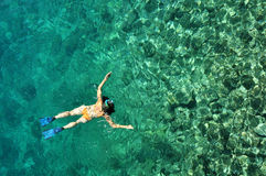 Young woman snorkeling in transparent shallow sea. Above coral reef stock photo