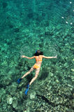 Young woman snorkeling in transparent shallow sea. Young woman in swimsuit snorkeling in clear shallow tropical sea over coral reefs stock photo