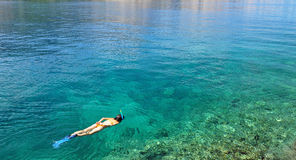 Young woman snorkeling in transparent shallow sea. Young woman in swimsuit snorkeling in clear shallow tropical sea over coral reefs stock photos