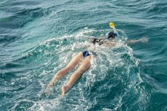 Young woman snorkeling in transparent shallow. Young woman at snorkeling in the tropical water. active woman free diving. Snorkeling in beautiful blue ocean on royalty free stock image