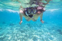 Young woman snorkeling in the tropical water. Of Mexico Stock Image