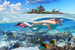 Young woman at snorkeling stock image