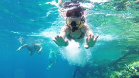 Young woman with snorkelling mask and tube swimming in red sea near coral reef. And colorful fish. Underwater view. Egypt. swimming tropical fish in underwater stock video footage