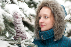 Young woman in snow-covered spruce forest Stock Photos