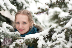 Young woman in snow-covered spruce forest Stock Photography