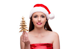 The young woman in snow girl costume in christmas concept Royalty Free Stock Images