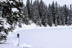 A young woman snowshoeing around Island Lake in Fernie, British Columbia, Canada. The majestic winter background is gorgeous. A young woman snowshoeing around stock photos