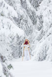 Young woman snowshoeing Royalty Free Stock Photography