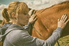 Woman caressing a horse. Young woman in sportswear is caressing the side back of a brown horse royalty free stock photo