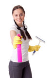 Young woman with spray bottle and brush Stock Photography