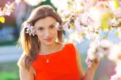 Young woman in spring garden Stock Image