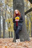 Young woman stand near tree in autumn park, yellow leaves stock images