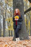 Young woman stand near tree in autumn park, yellow leaves royalty free stock photography