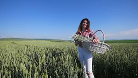 Young woman standing with basket with flowers a wheat field with blue sky on the background stock video footage