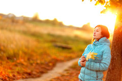 Young woman standing below autumn tree on sunset Royalty Free Stock Image