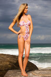 Young Woman Standing on Cloudy Beach in Bikini Stock Image