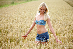 Young woman standing in a cornfield. Young woman with bikini top and shorts standing in a cornfield. She looks relaxed and cheerful Royalty Free Stock Image