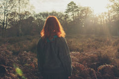 Young woman standing in forest at sunset Royalty Free Stock Photos