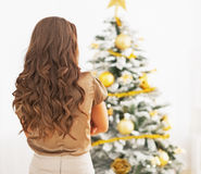 Young woman standing in front of christmas tree . rear view Stock Photos