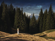 Young woman standing on a hillside in the mountains Royalty Free Stock Photography