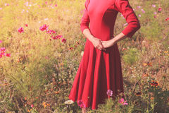 Young woman standing in a meadow Royalty Free Stock Photos