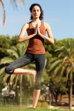 Young woman standing open one leg in yoga position. Portrait of young woman standing open one leg in yoga position Stock Photos