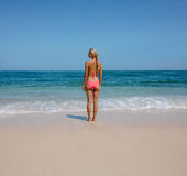 Young woman standing on serene beach Stock Photography