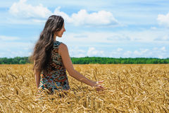 Young woman standing and touch a wheat in cereals field Royalty Free Stock Photography