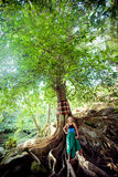 Young woman standing on the tree roots Stock Image