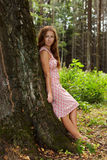 Young woman standing in a tree trunk Stock Image