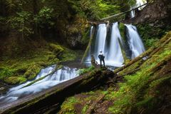 Young woman standing by a waterfall in Douglas County in the U.S. state of Oregon.[. The long exposure shots two degrees of water royalty free stock image