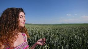 Young woman standing on a wheat field with blue sky on the background stock footage