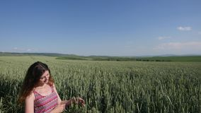 Young woman standing on a wheat field with blue sky on the background stock video